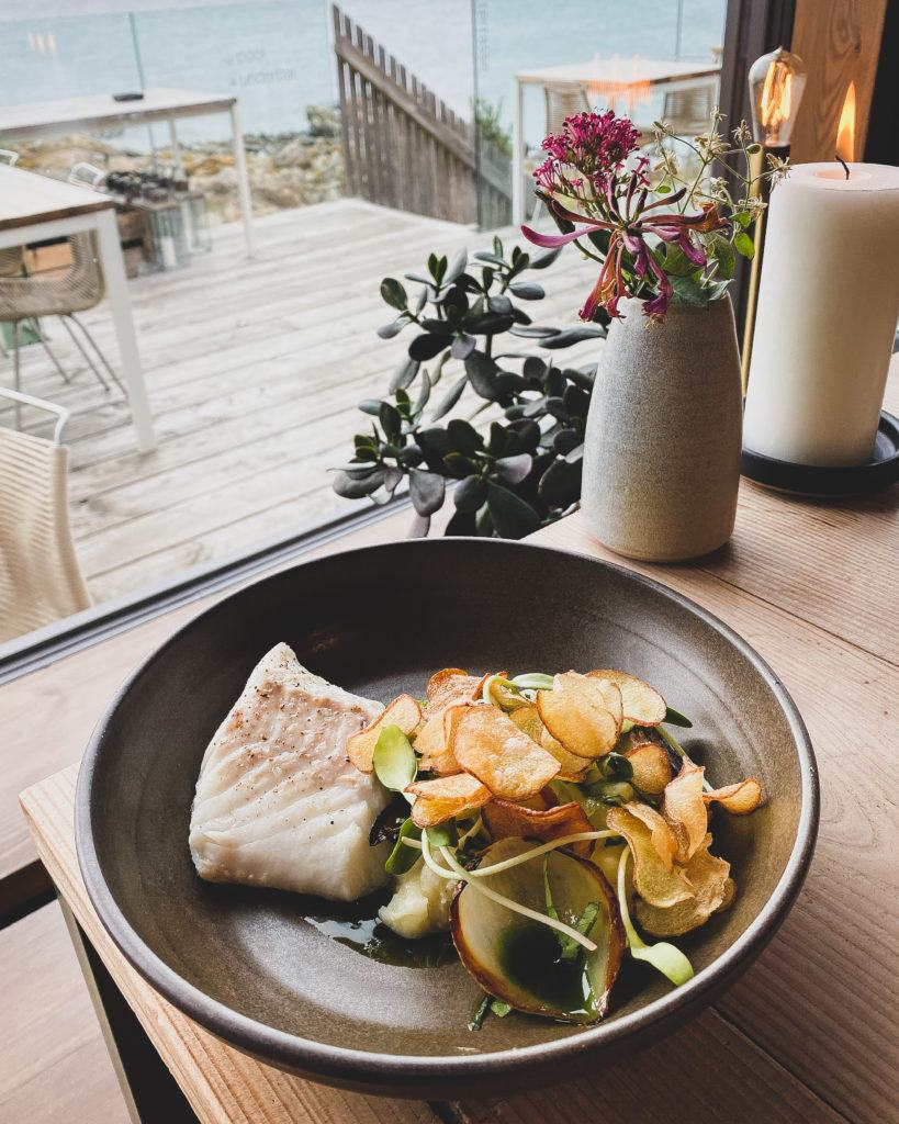 Nordlandet - Dampet torsk med kartoffelkompot, persille, syltet grillet løg